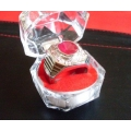 Empowered Red Lemongrass Gem Stone wth Zirconia Diamonds Attraction Wealth Talisman